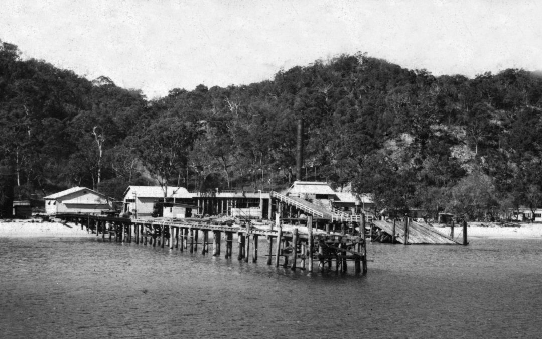 From The Archives: Tangalooma Whaling Station